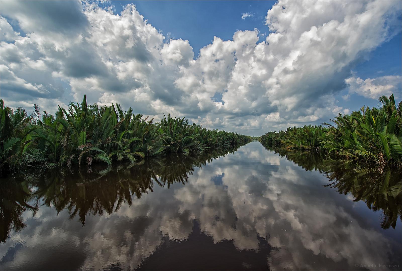 Indonesien [15] - Reflection