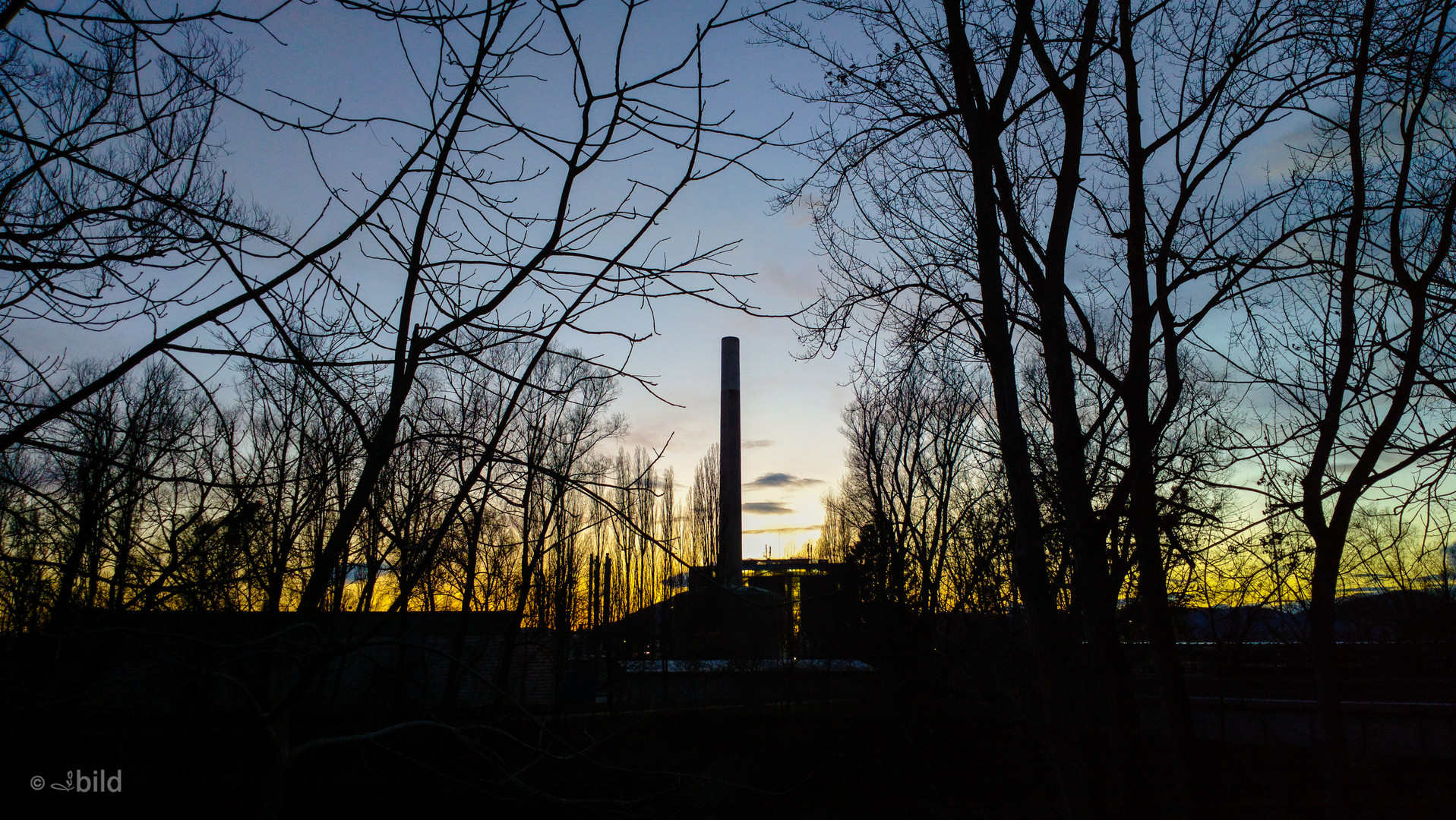 industry in the woods