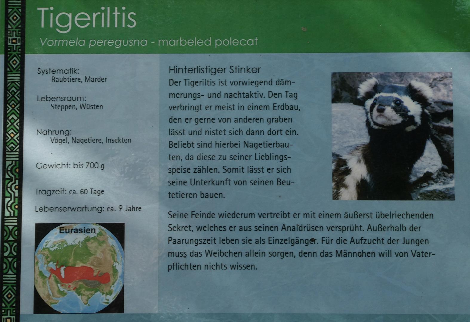 Informationstafel Zoo Magdeburg