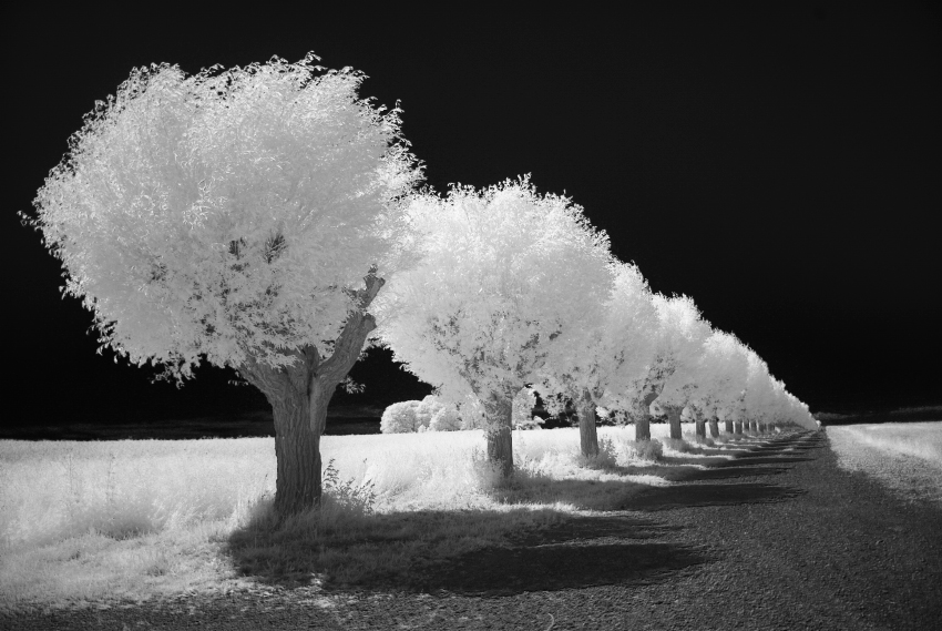 Infrared alley