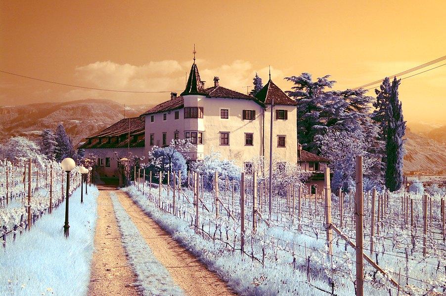 Infrarot in Südtirol