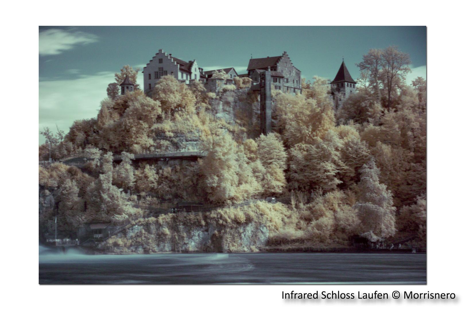 Infrarot Schloss Laufen