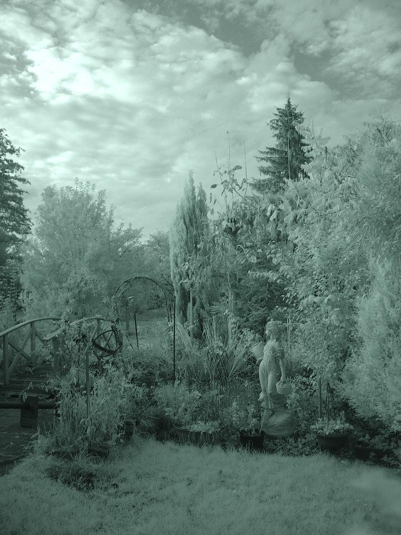 Infrarotaufnahme im Herbst