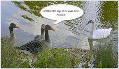 ...ingnore...jetzt auch in der tierwelt entdeckt...