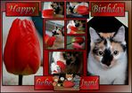 Ingrids Geburtstagsgeschichte