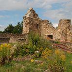 Innenhof - Burgruine Roding