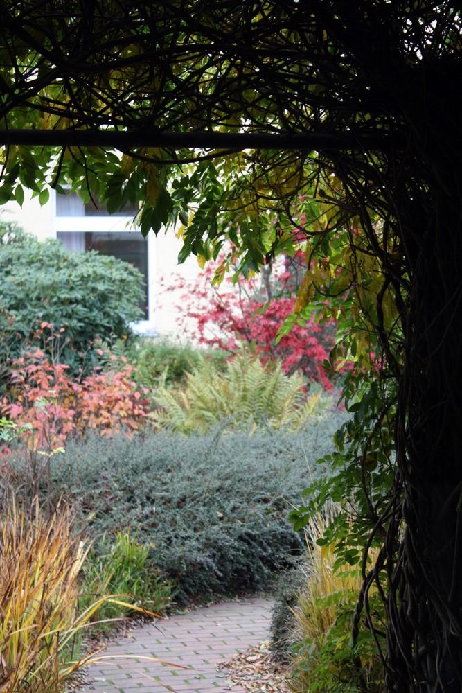 Innenhof im Herbst