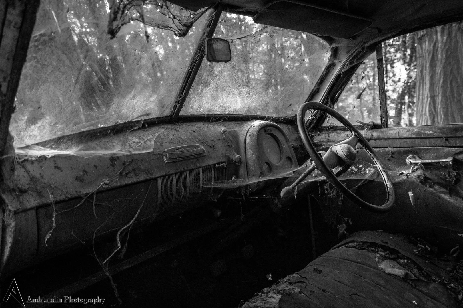 Innenraum/Autofriedhof