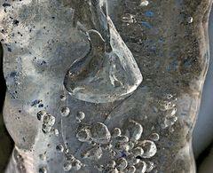 Innere Organe eines Eiszapfens. - Organes internes d'un stalactite...