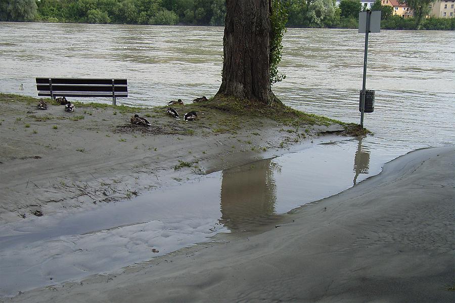 Innhochwasser in Passau