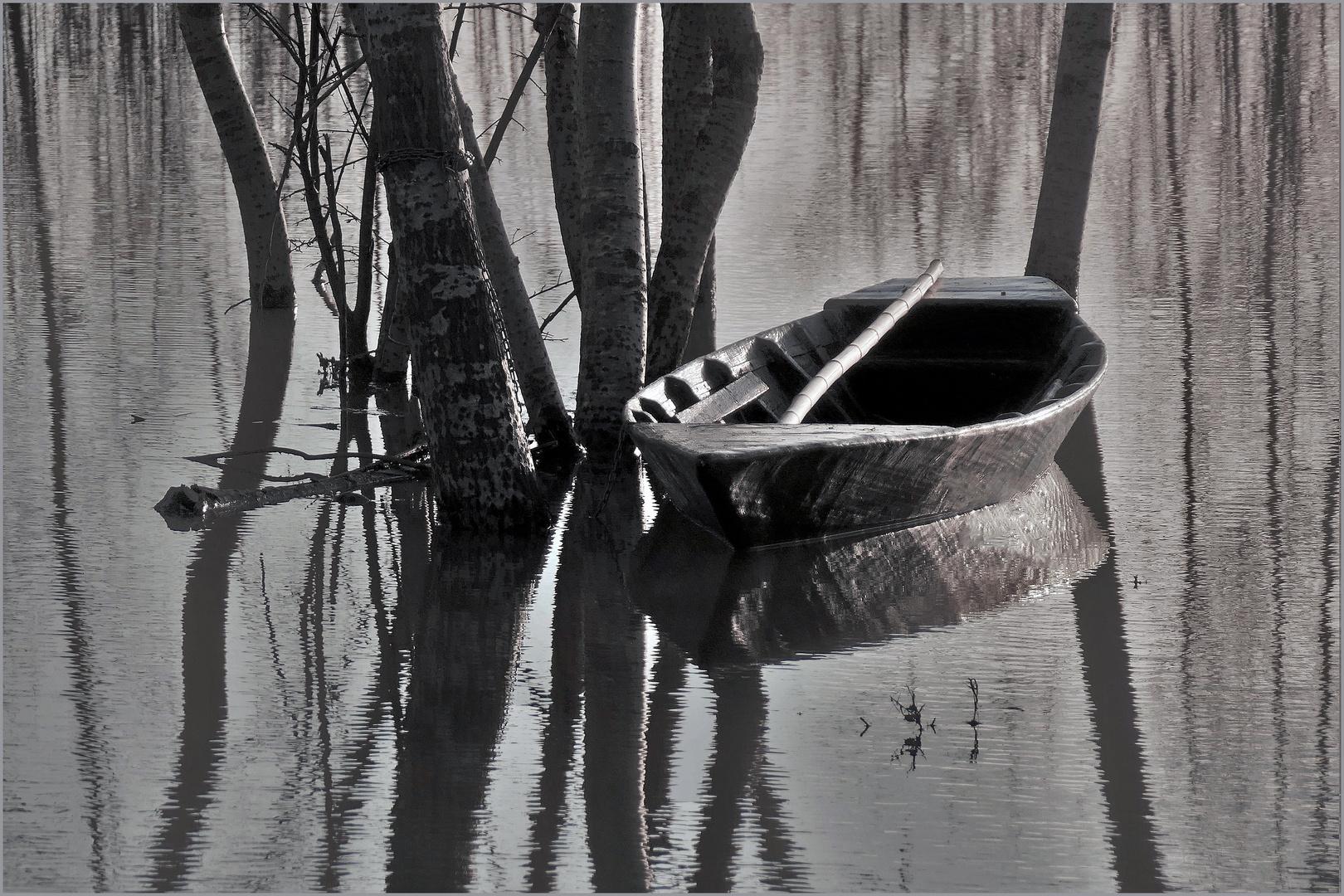 inondation au marais .....