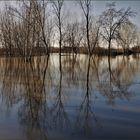 inondation au marais  :2ème tableau  15h