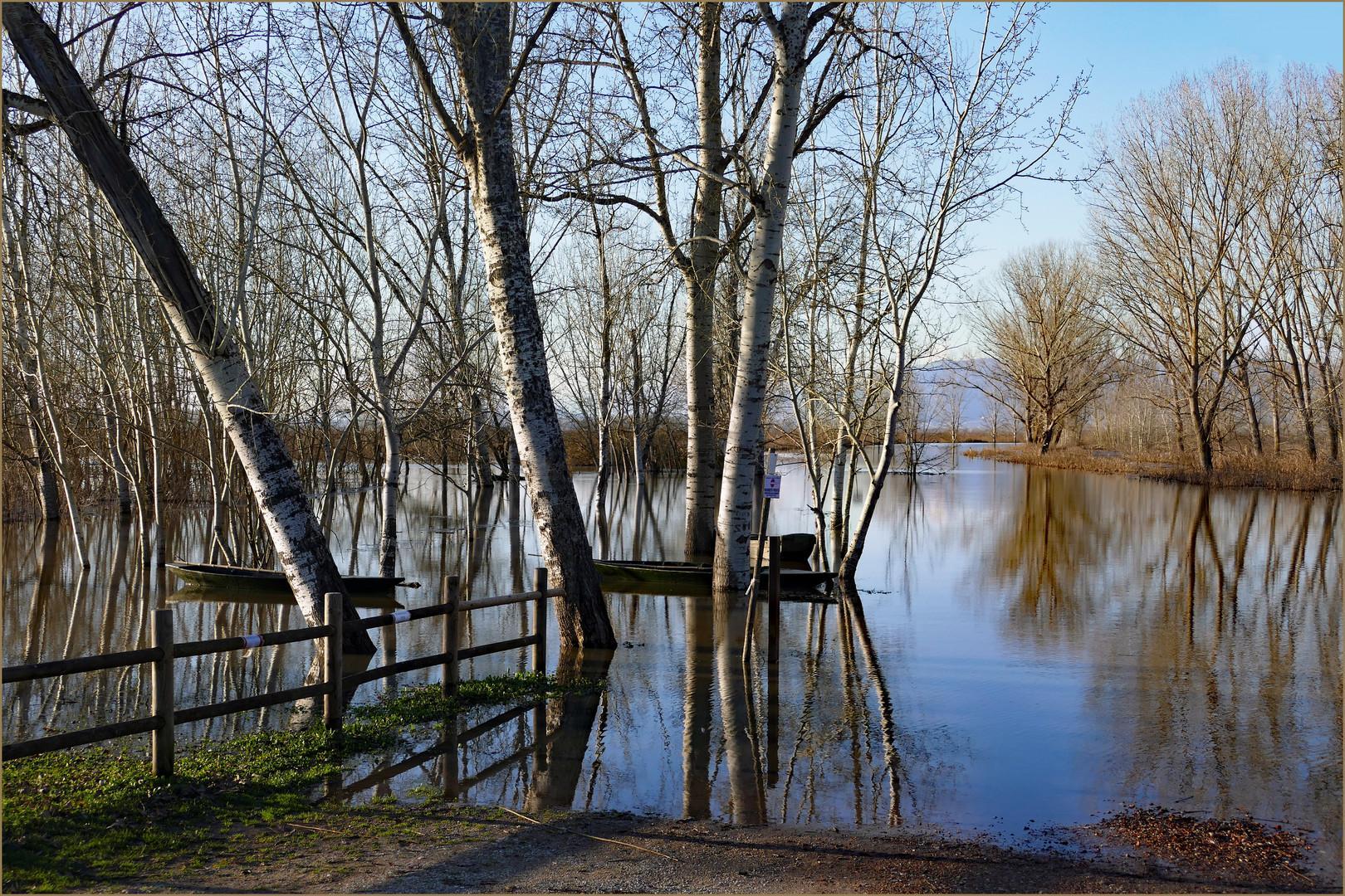inondation  au marais ! Premier tableau 14h