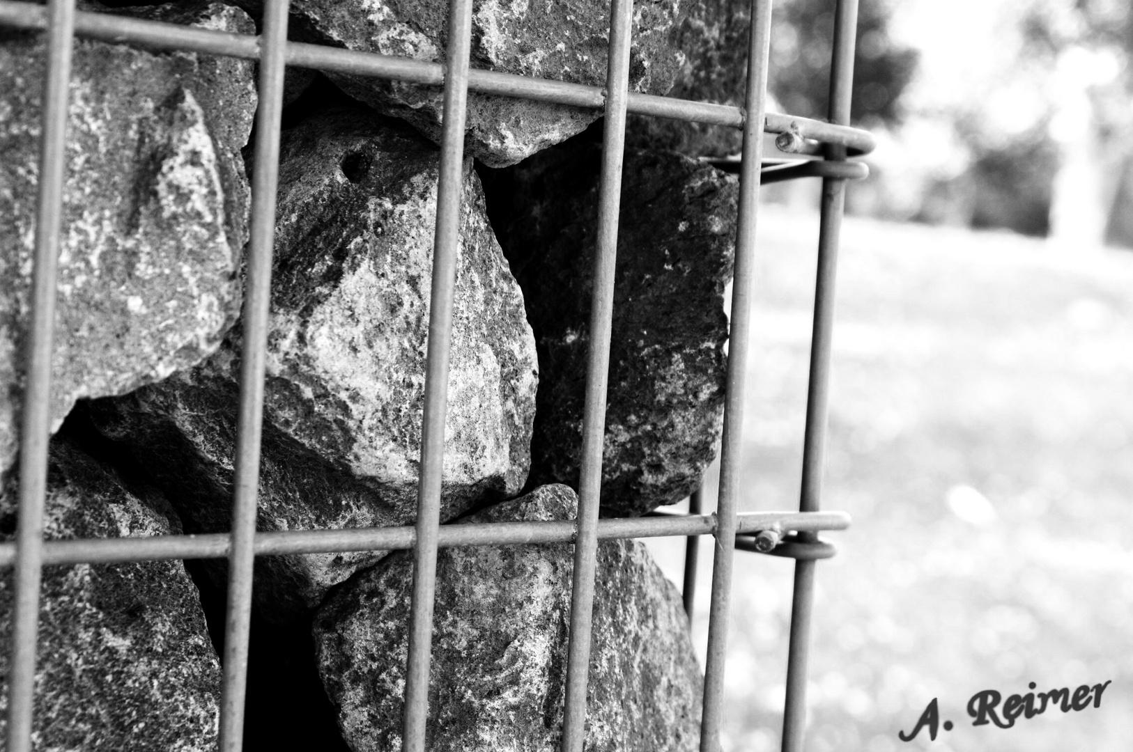 inprisoned