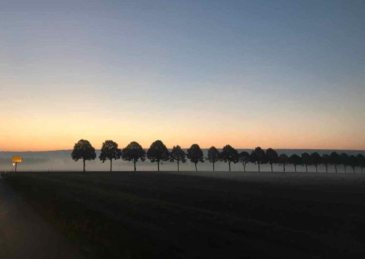 Insel Fehmarn im Abendlicht