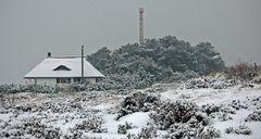 Insel Hiddensee im Schneesturm