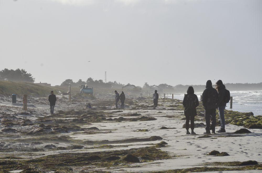 Insel  Hiddensee im Sturm