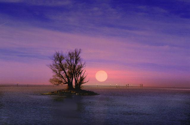 Insel im Bodensee