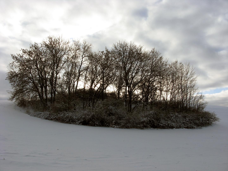 Insel im Schnee