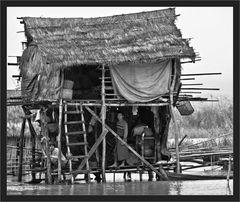 Insel-Leben im Monsum