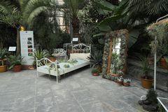 Insel Mainau mit der Kakteen Ausstellung im Palmenhaus