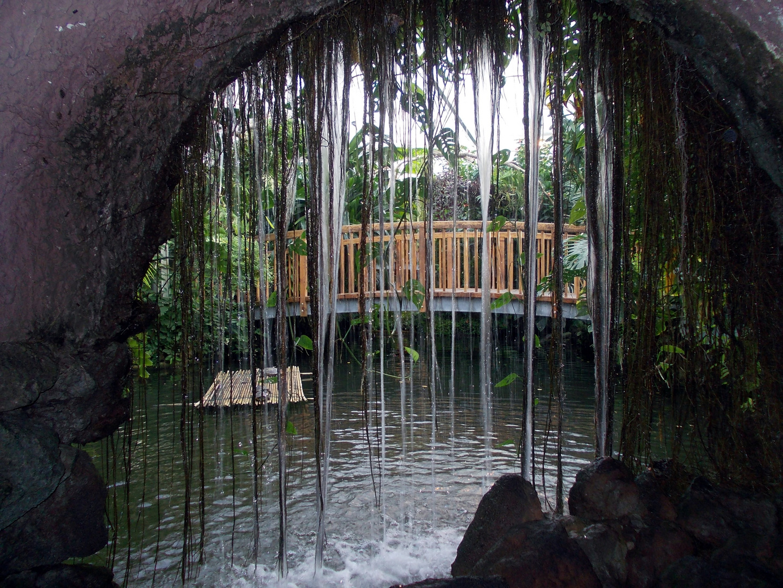 Insel Mainau/ Schmetterlingshaus