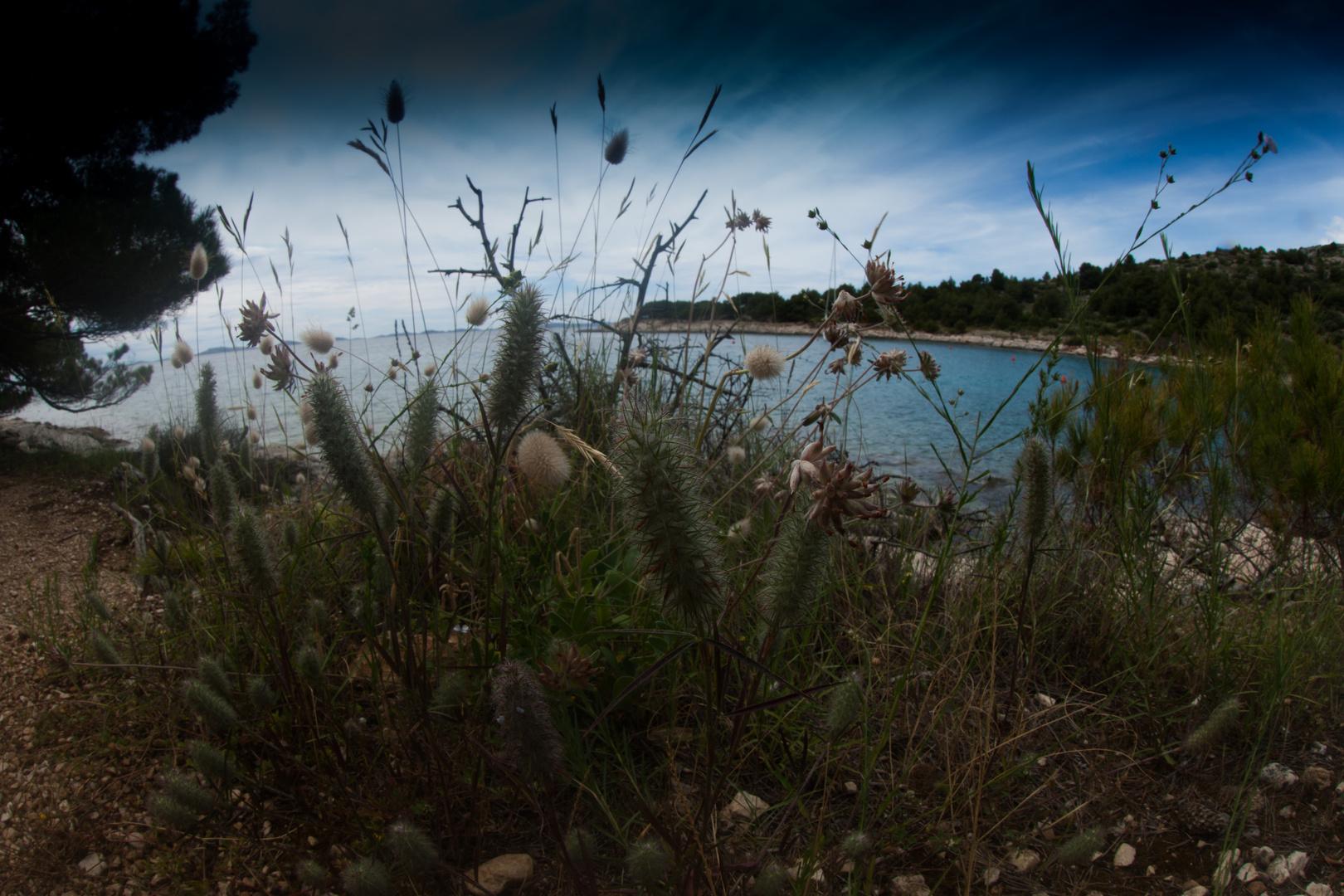 Insel Murter 3