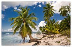 Insel Saona 2 reload