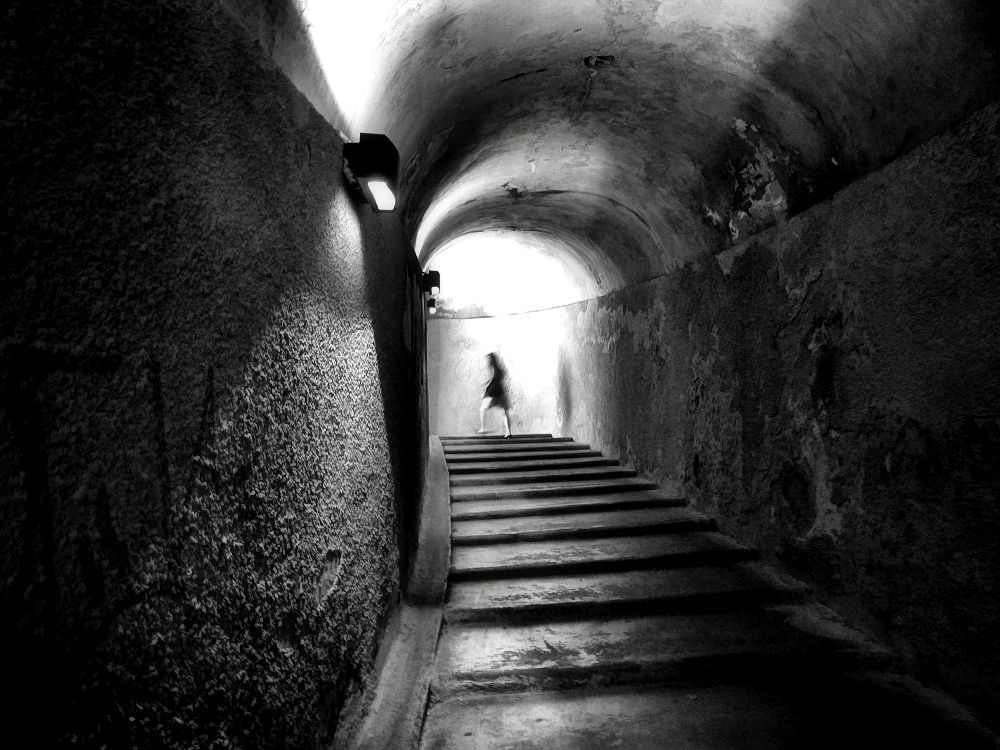 Inside fortified wall of Lucca