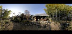 Inside of a Japanese garden
