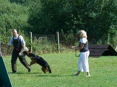 °°° Interessante Einlage - Nix ist mit anbändeln - Schutzhunde im Einsatz °°°