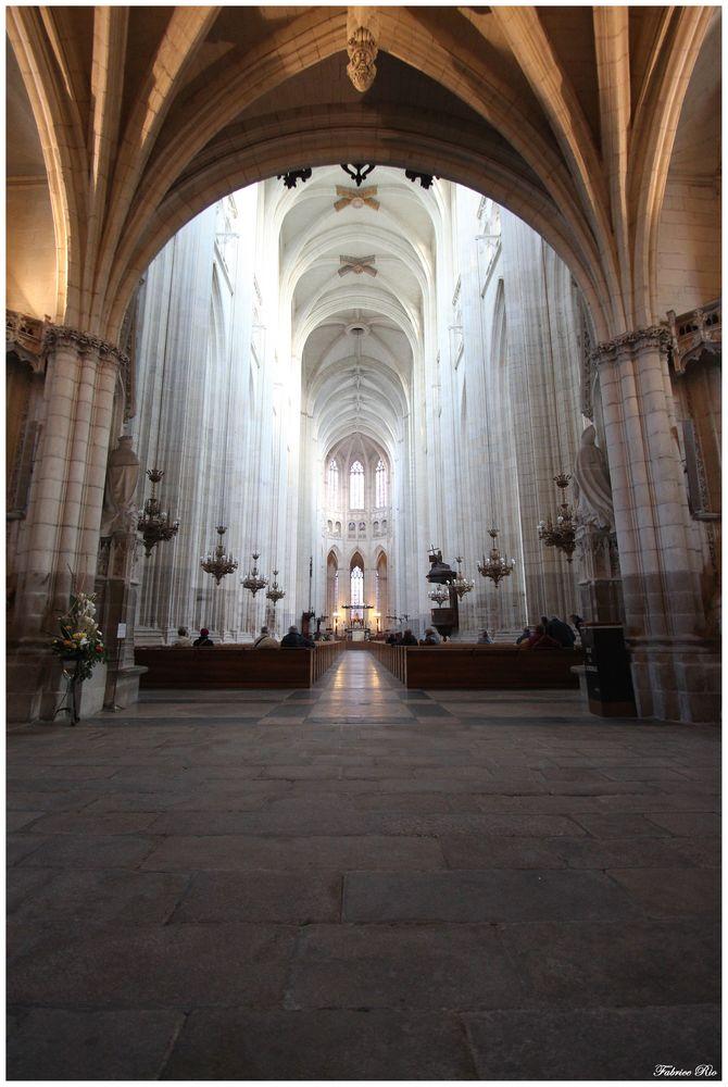 Intérieur de la Cathédrale Saint-Pierre-et-Saint-Paul de Nantes