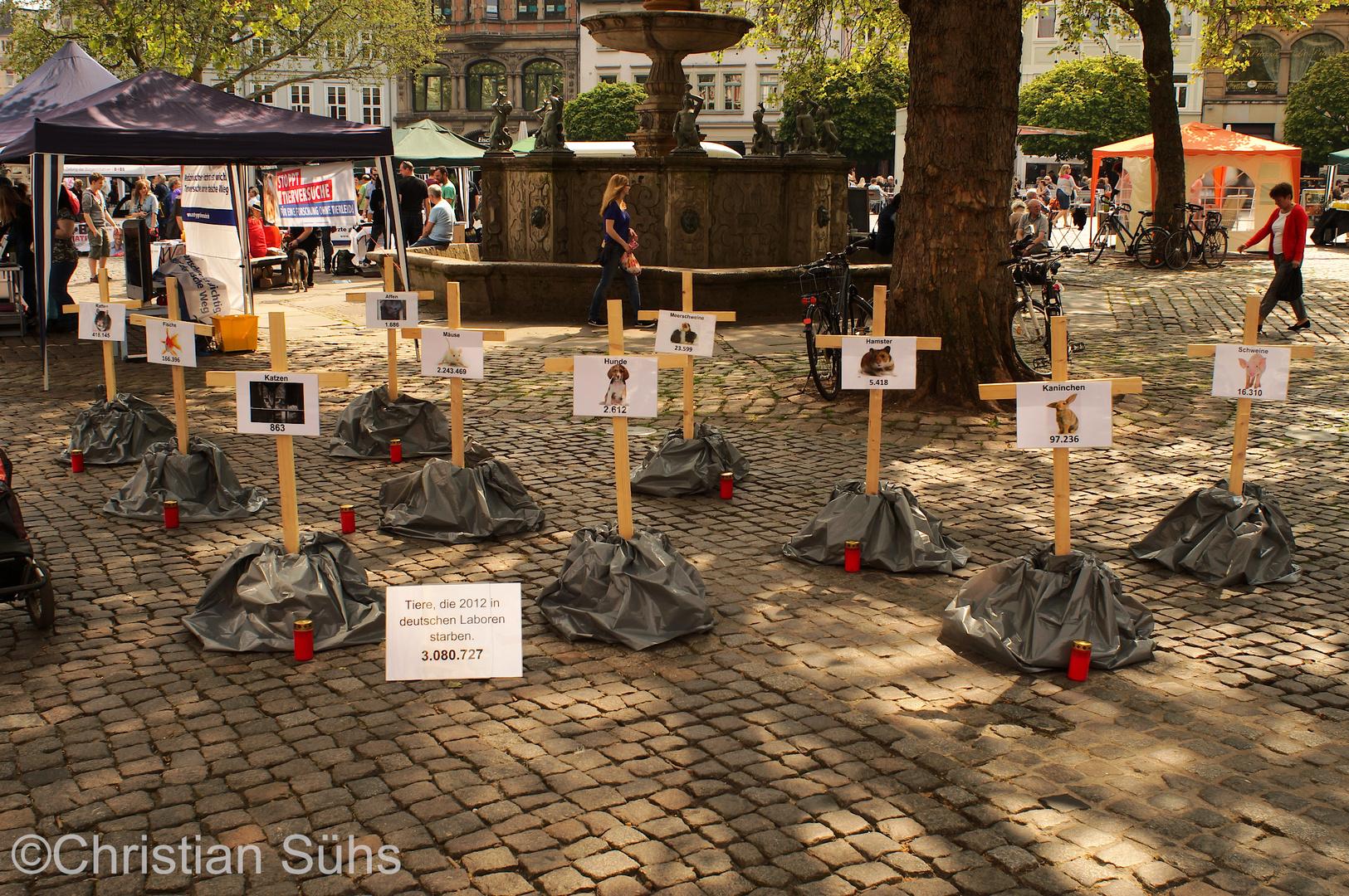 Internationaler Tag der Abschaffung von Tierversuchen in Braunschweig