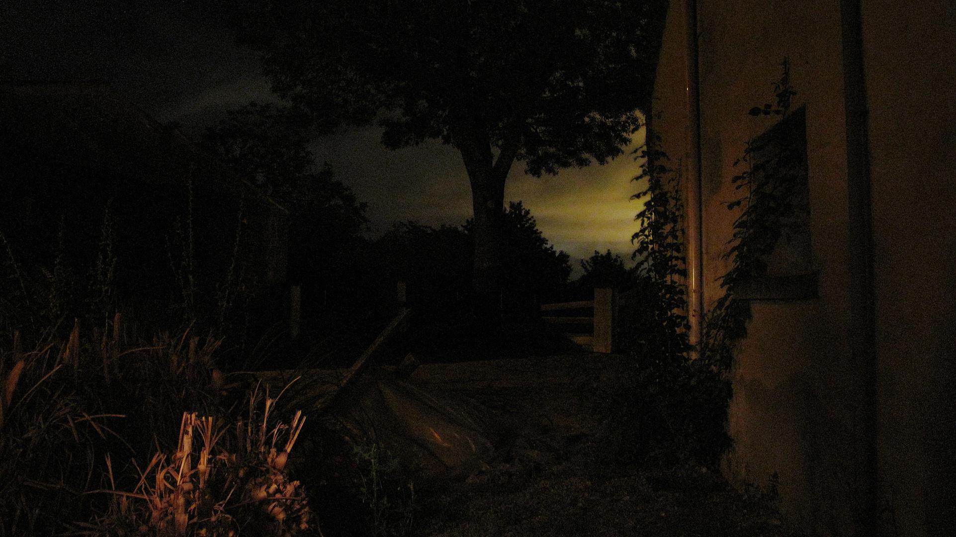 Into the backyard, at night.