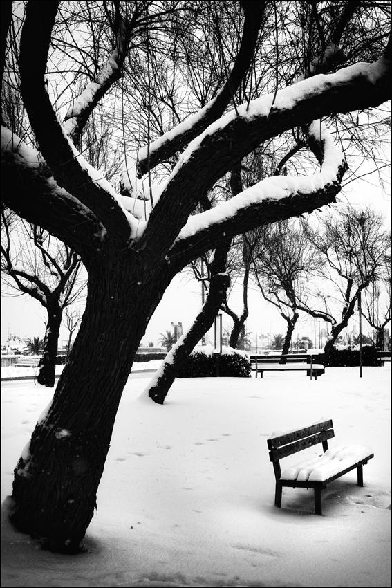 Inverno bn