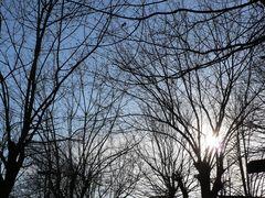 Inverno ......il sole diventa freddo ........ma non sempre....