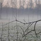 Inverno in brughiera