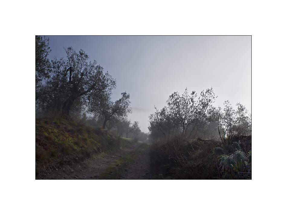 Inverno in Umbria V