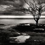 inverno mare #2