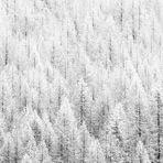 Inverno meteorologico