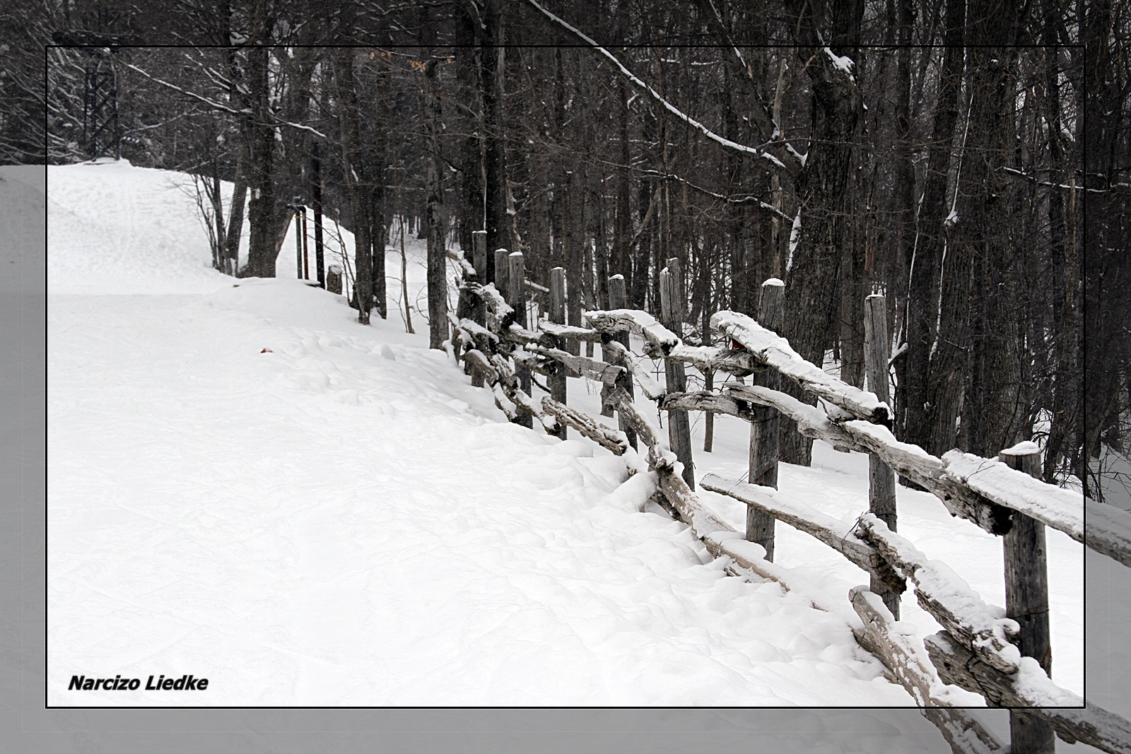 Inverno VI