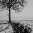 inverno01