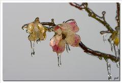 Inverno_3