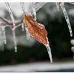 Inverno_6