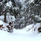 Invierno = Nieve / L'hiver = Neige / Winter = Schnee...05