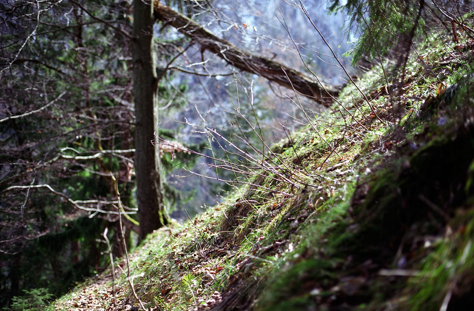 Inzell Am Berg Falkenstein