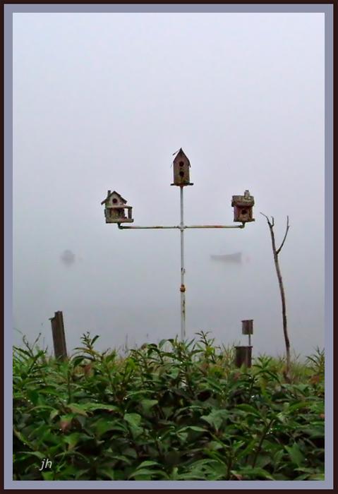 Ipswich Fog