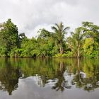 Iquitos