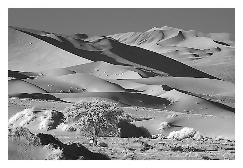 IR in der Wüste