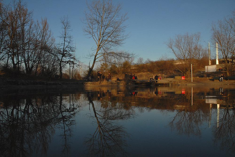Irchel park